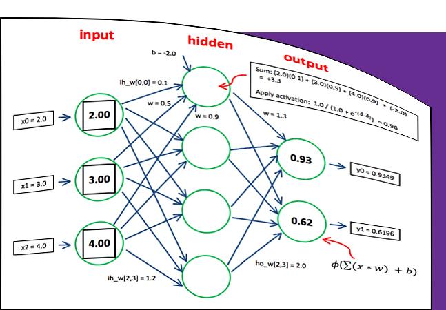 The Neural Network Input-Process-Output Mechanism -- Visual