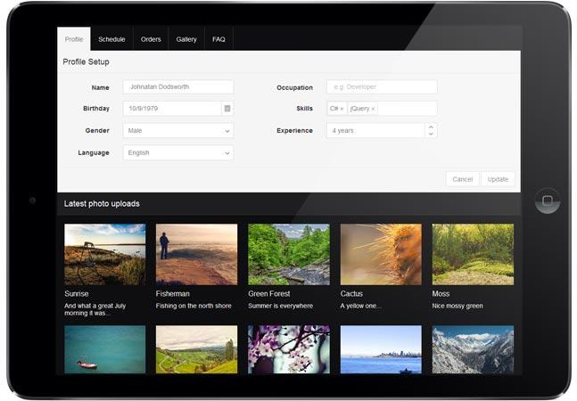 Telerik Makes Kendo UI Available as Open Source Platform -- Visual