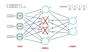 The Neural Network Dropout Mechanism