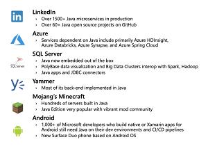 Java at Microsoft