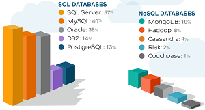 Which database(s) does your company currently use?